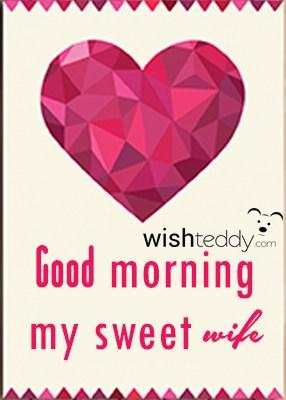 wish-teddy-236