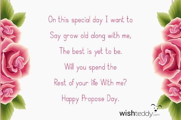 wish-teddy-4515